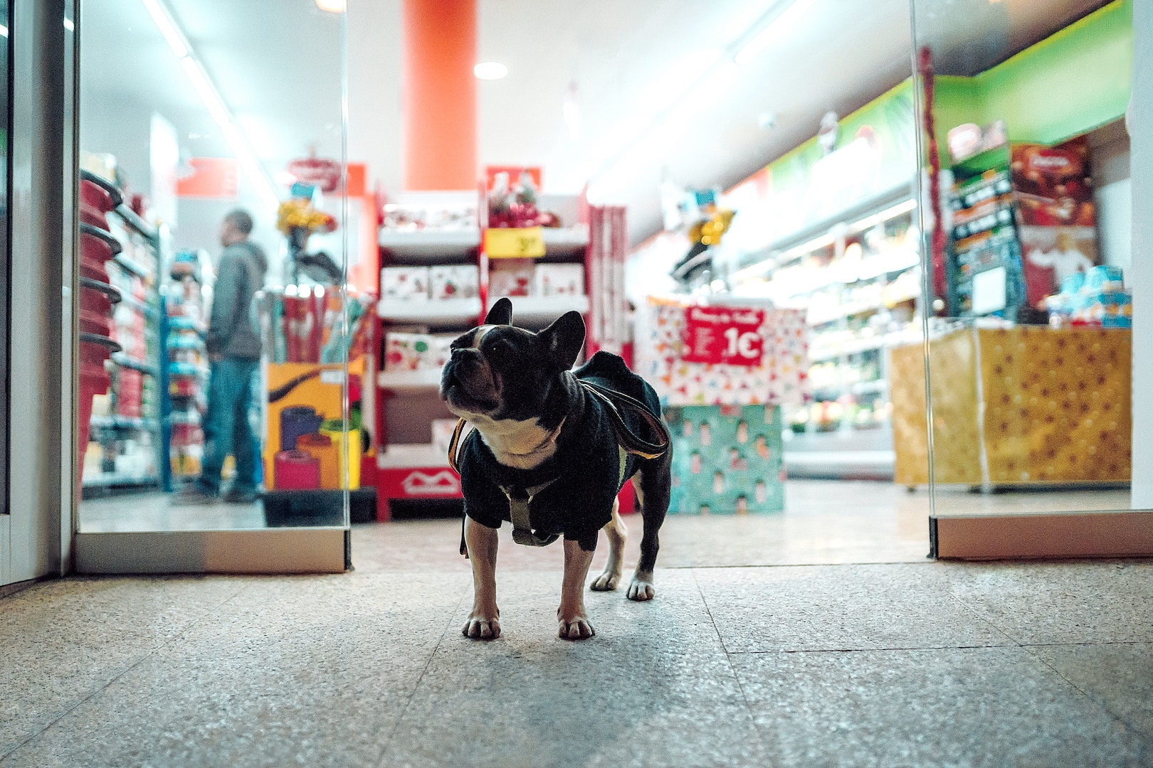 Aromamarketing czyli aromatyzacja strefy wejścia do sklepu spożywczego.